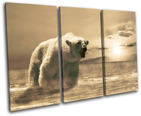 Polar Bear Animals - 13-2221(00B)-TR32-LO